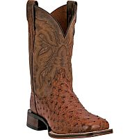 Мужские сапоги Dan Post Men's Alamosa Western Boot